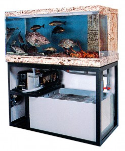 Seawater chiller for fish tank
